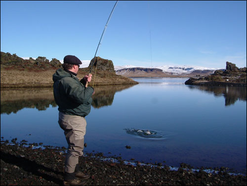 "Playing nice fish in Tungulækur river, in background can be seen Iceland´s biggest clacier named ""Vatnajökull""."